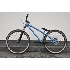 Leafcycles Backyard Pro LTD 2016 blue
