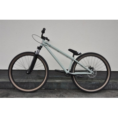 Leafcycles Backyard Pro LTD 2016 mintgreen