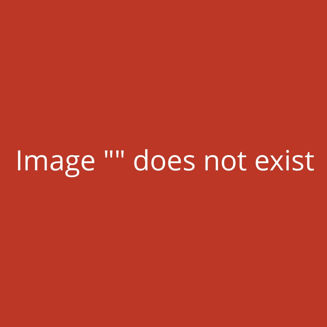 Ride Capo Snowboardbindung Tan