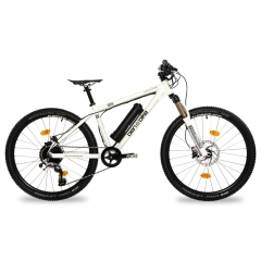 Ben-E-Bike Twentysix E-Power Pro weiß